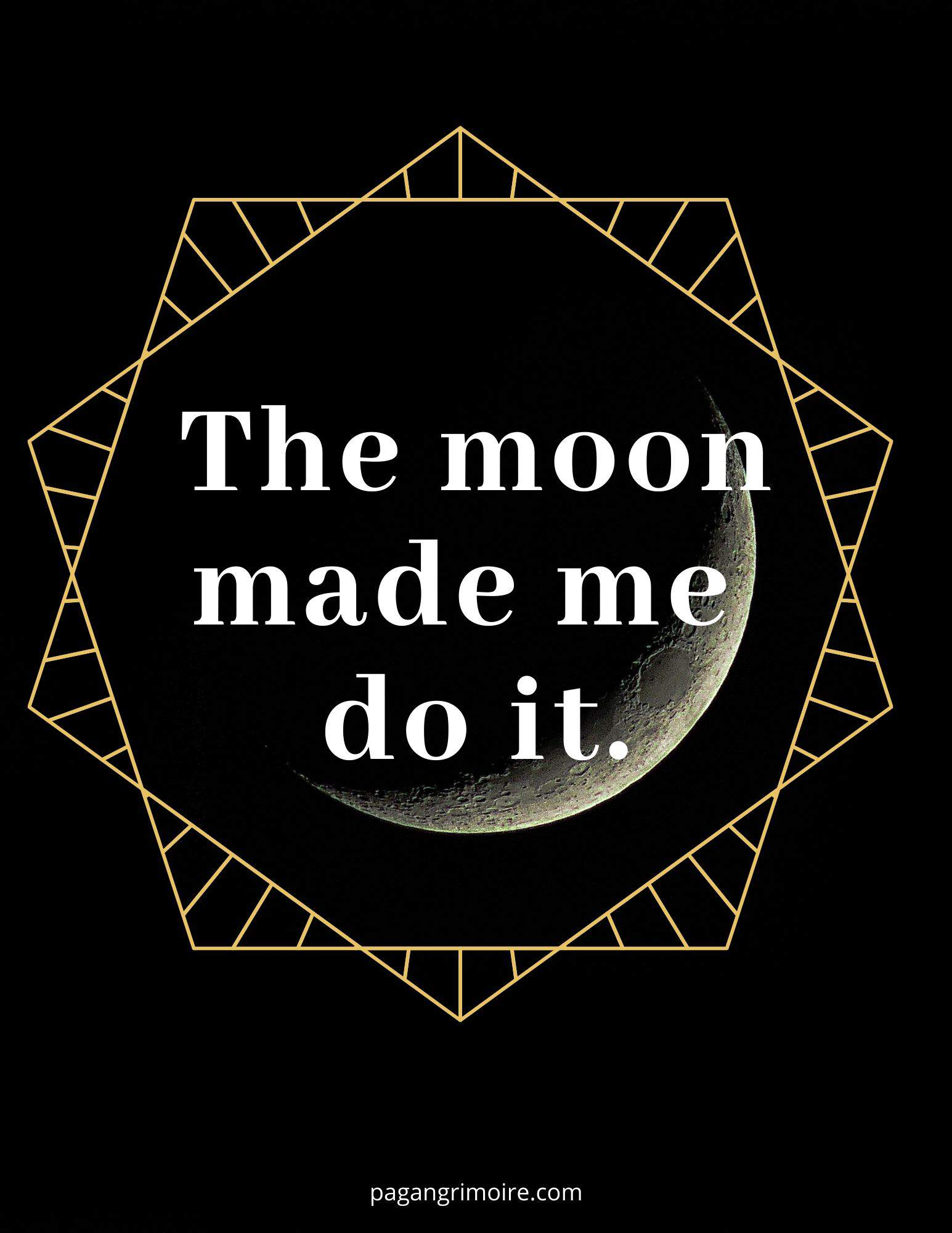 Witch Quotes - Moon Made Me Do It