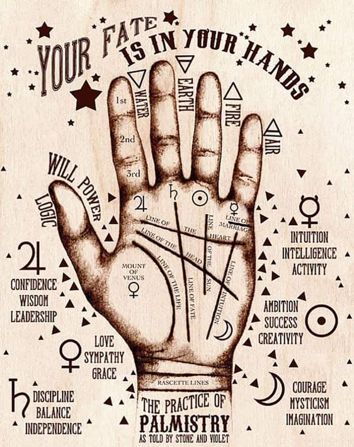 Your Fate Is In Your Hands Palmistry