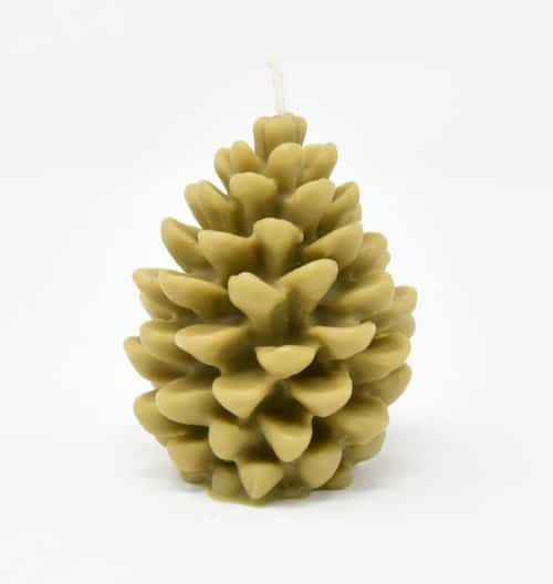 Bayberry Candles - Pinecone