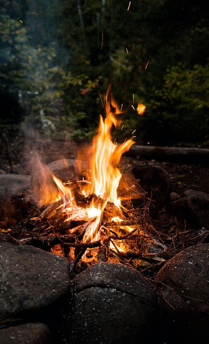 What Is Beltane - Bonfire in Woods