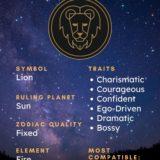 Leo Symbol - Pin